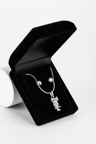 Kép 1/4 - Ezüst Színű Nyaklánc Bagoly Medállal És Fülbevalóval Szettben Ajándékdobozban